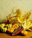 Indian Corn & Gourds Royalty Free Stock Photo