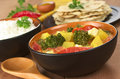 Indian Curry Dish Stock Image