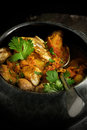 Indian Curry II Royalty Free Stock Photo