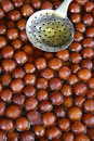 Indian dessert, gulab jaman Royalty Free Stock Photography