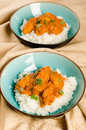 Indian dish - Chicken tikka masala served with rice and garnishe Royalty Free Stock Image