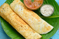 Indian dosa is special food made of rice and lentils in south india Royalty Free Stock Image
