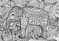 Indian elephant doodle coloring for adults. Hand drawn doodle.