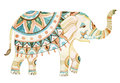 Indian Elephant Watercolor Ill...