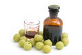 Indian gooseberry liqueur, alternative medicine Royalty Free Stock Photo