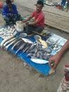 Indian market Kata bazaar horishpur