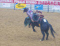 Indian national finals rodeo las vegas nov cowboy participating in a bucking horse competition at the held in las vegas nevada on Stock Photo