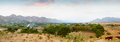 Indian nature panorama with mountains and goats in the evening Royalty Free Stock Photography