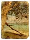 Indian Ocean landscape, Seychelles. Old postcard. Royalty Free Stock Photo