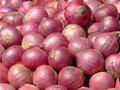 Indian Onion Abstract Royalty Free Stock Photography