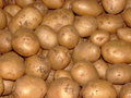 Indian Potato Abstract Stock Photo
