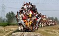 Indian Rail Passengers. Royalty Free Stock Photo