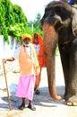 Indian sadhu's Royalty Free Stock Photo