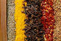 Indian spices a line up of cinnamon cumin seeds turmeric cloves crushed chillies and fenugreek seeds typical ingredients of a Stock Photos
