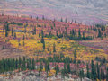 Indian summer mountainside with colorful vegetation foliage at fall time also called Royalty Free Stock Photo