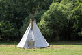 Indian teepee in meadow Royalty Free Stock Photo