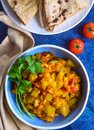 Indian veg meal - bottle gourd curry with roti Royalty Free Stock Photo