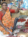Indian woman sells chili peppers Stock Images