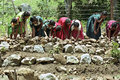 Indian women building terraces in vegetables garden Royalty Free Stock Photo