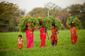 Indian women work at farmland Stock Photo