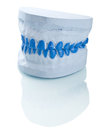 Individual plaster dental molds to make trays Stock Image