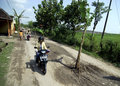 Indonesia road condition banana trees are planted in the middle of a by locals to protest about damaged in boyolali java Stock Images