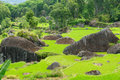 Indonesia, Sulawesi, Tana Toraja, Rice terraces Royalty Free Stock Image