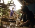 Indonesian declining economy a bamboo handicraft workshop in solo java indonesia in grew percent year over year from previously Stock Photo