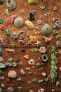 Indoor climbing wall Stock Photos