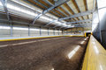 Indoor riding hall empty modern Royalty Free Stock Photography