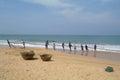 Induruwa sri lanka apr sri lankan fishermen pull big net in induruwa sri lanka fishing is a key occupation on sri la mar sea coast Stock Photography