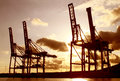 Industrial cargo cranes at sunset Royalty Free Stock Photo