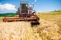 Industrial harvesting combine harvesting wheat crops Royalty Free Stock Image