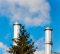 Industry chimney with tree of an industrial company symbolic photo for environmental protection and ozone Stock Photo