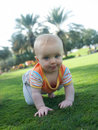 Infant crawling on a green grass Royalty Free Stock Photography