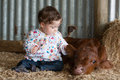Infant patting a calf an pats at farm Stock Photo