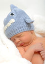 Infant sleeping in shark hat newborn gray Stock Photography