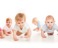 Infants crawling race Royalty Free Stock Photo