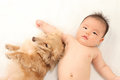 Infants and dog Stock Image