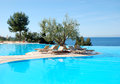 Infinity swimming pool with olive tree Royalty Free Stock Images