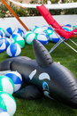 Inflatable toy dolphin and balls in the garden Stock Photography
