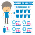 Infographic benefit Drink Water Body Water . concept vector illu