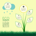 Infographic of ecology, concept design with plant