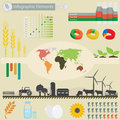 Infographic elements agriculture for you design Stock Images