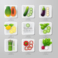 Infographic food vegetables flat lay idea vector illustration hipster concept can be used for layout advertising and web design Stock Images