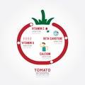Infographic tomato health concept template design . concept vect
