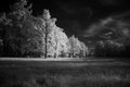 Infrared architectural ensemble ekaterinenskaya park in tsarskoye selo Royalty Free Stock Photography