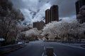 Infrared city building and traffic Royalty Free Stock Images
