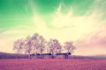 Infrared landscape abstract filtered with barns in farmland Stock Images