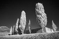 Infrared landscape of Italy